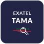 TAMA Project